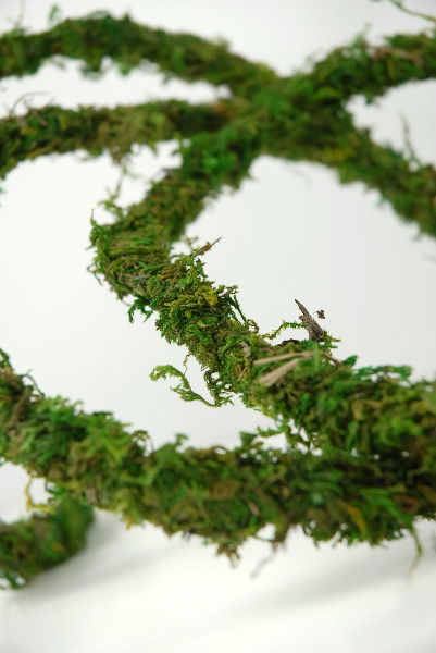 W Midlands Natural Decor Real Wired Moss Vine Handmade Jungle