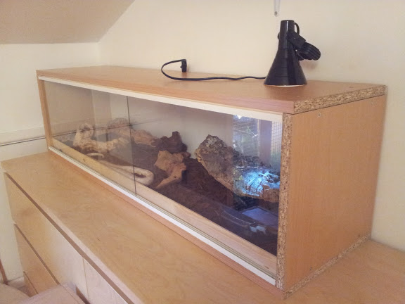Nw England 4ft Vivarium With Heat Lamp For Leds Reptile Forums