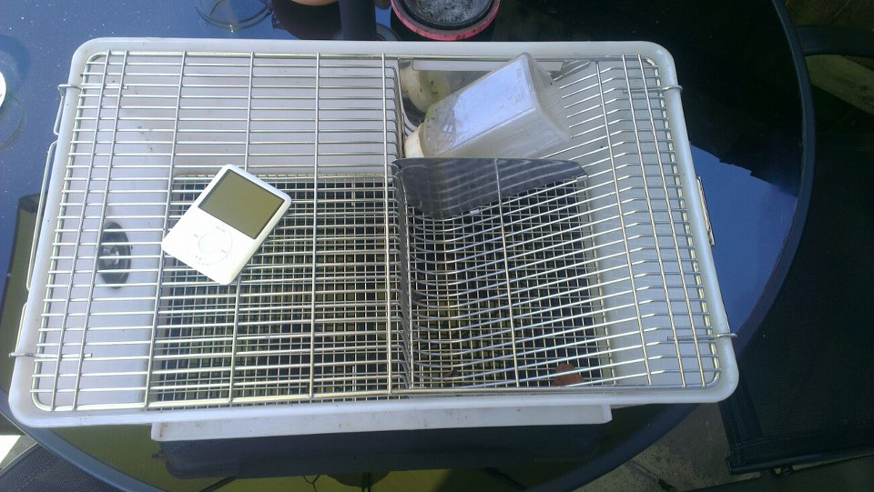 SE England Rat/Mouse/Rodent Lab Cage for sale Offers