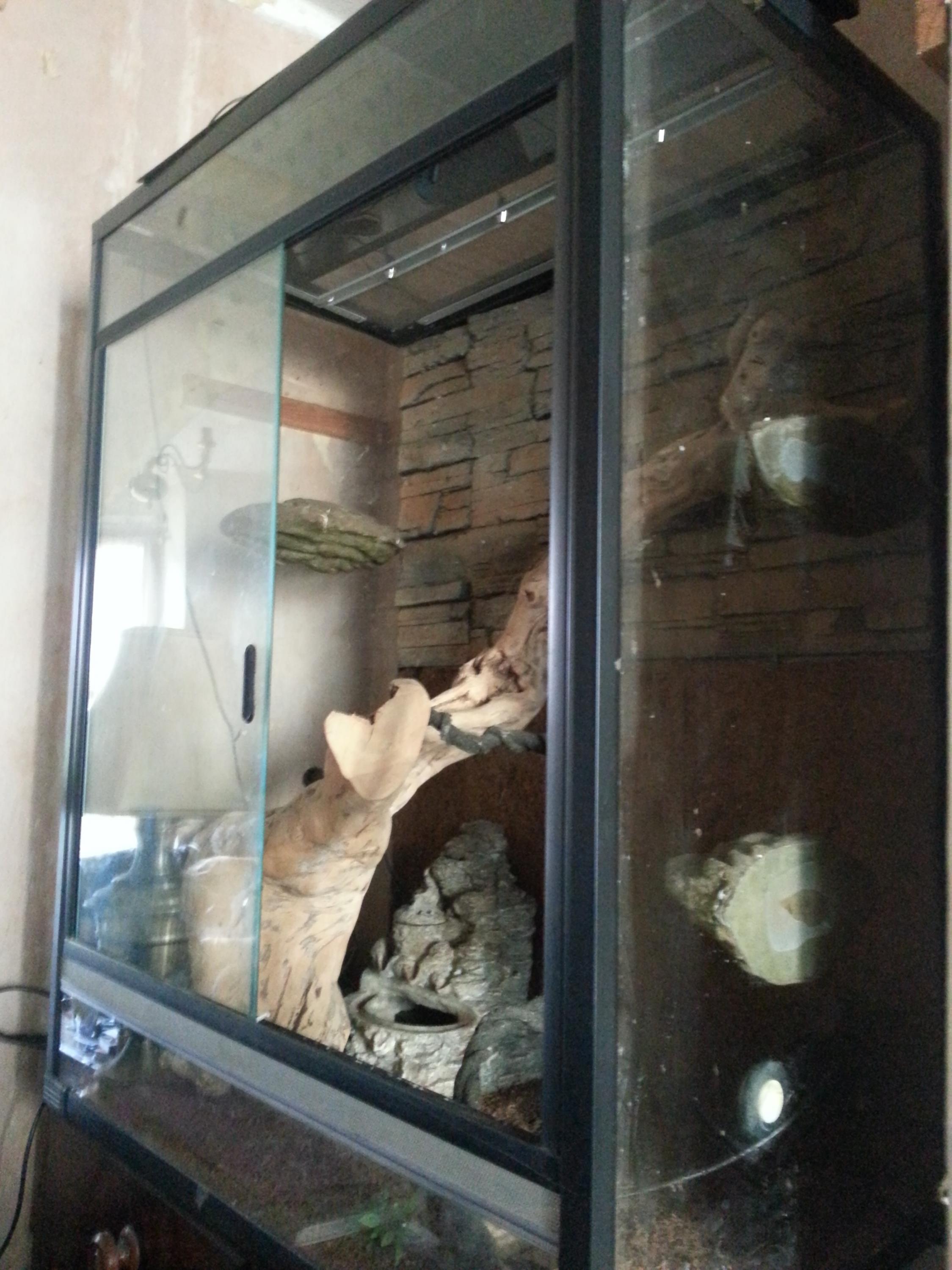 Nw England Rare Huge Glass Vivarium Terrarium And Extras Reptile