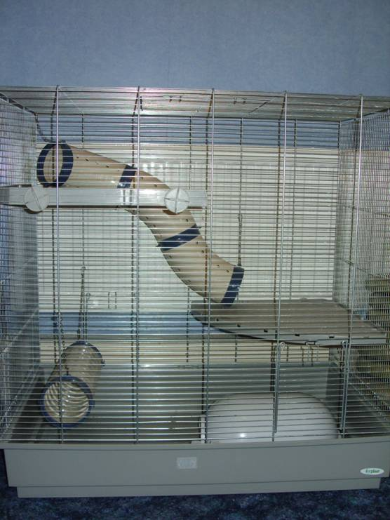 Jenny Rat Cage