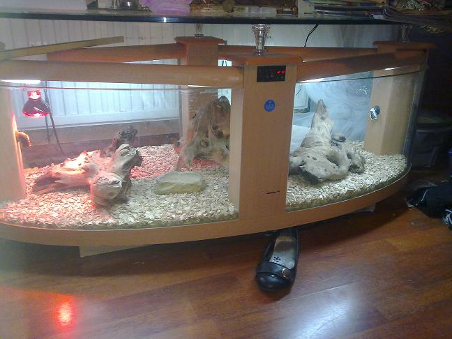 Se england coffee table viv reptile forums for Coffee table enclosure