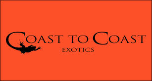 Coast to Coast Exotics Portal to deals, news and special offers September 2014-download.jpg