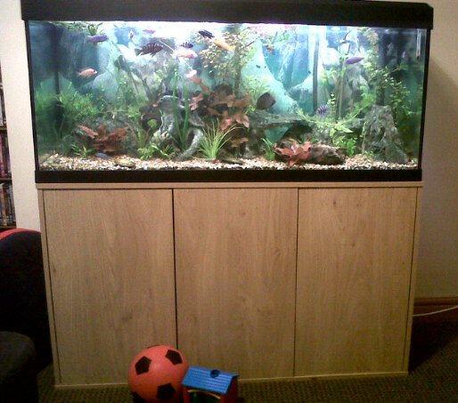 ... Fish Tank/Aquarium Full Set Up + Extras - Cost Over ?800! - Reptile