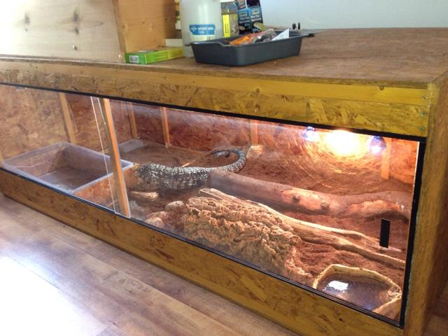 argentine tegu cage plans my blog about may2018 calendar 66 best