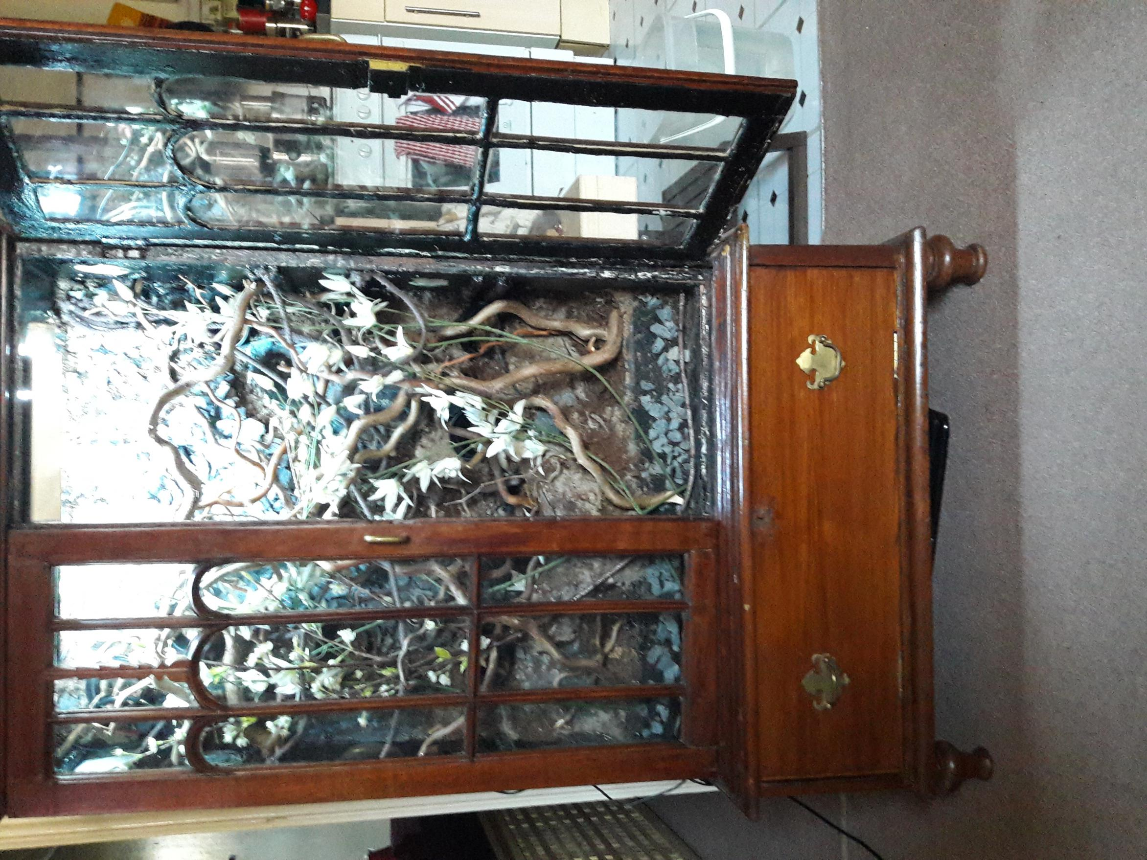 Reptile Vivarium - Cabinet Conversion - Solid Antique Mahogany-img_1274.jpg