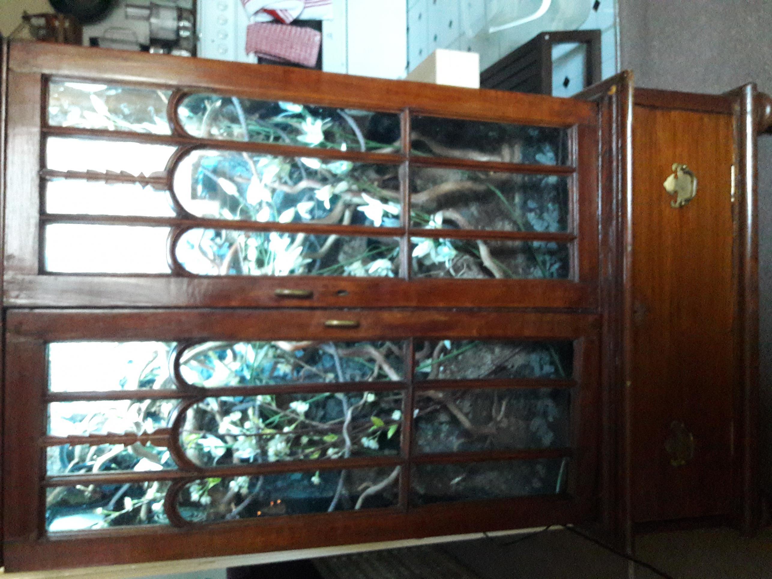 Reptile Vivarium - Cabinet Conversion - Solid Antique Mahogany-img_1276.jpg