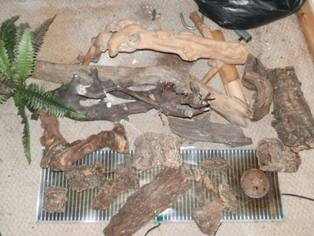 For sale reptile room clear out, job lot!!-p2040900.jpg