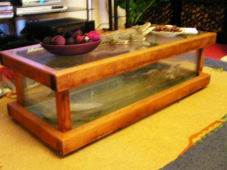 Coffee Table Vivarium Pict0432