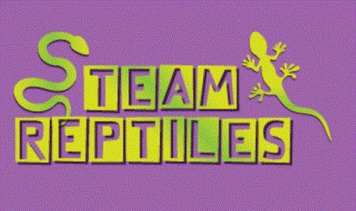 Team Reptiles July 2012 Stock List-team-reptiles-banner.jpg