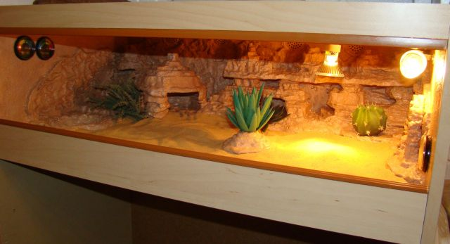 Reptile Forums View Single Post Scotland Unique Vivarium Terrarium System Of 3 Reptile