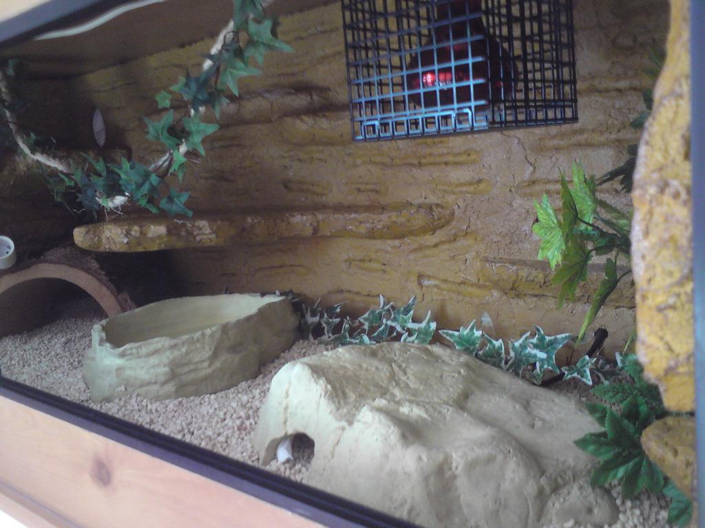 ReptileCB custom enclosures-viv3.jpeg
