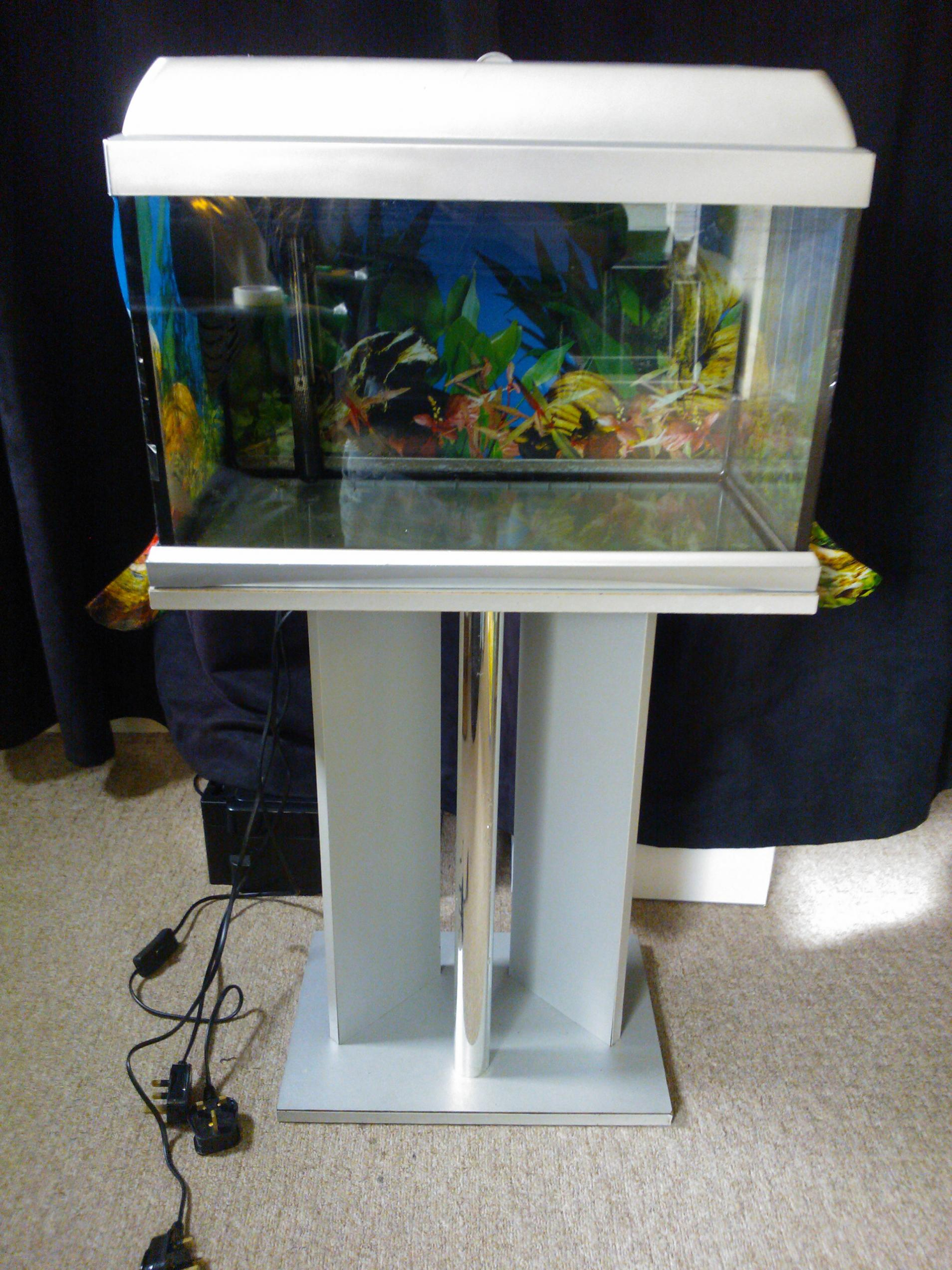 ne england small fish tank for sale
