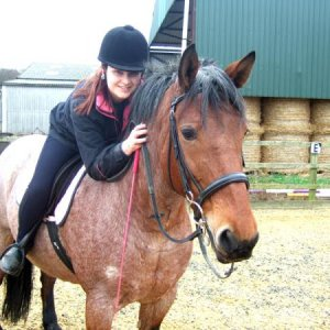 Rosie, my lovely mare (bay roan Ardennes cross). Now sold to another home, I miss her loads